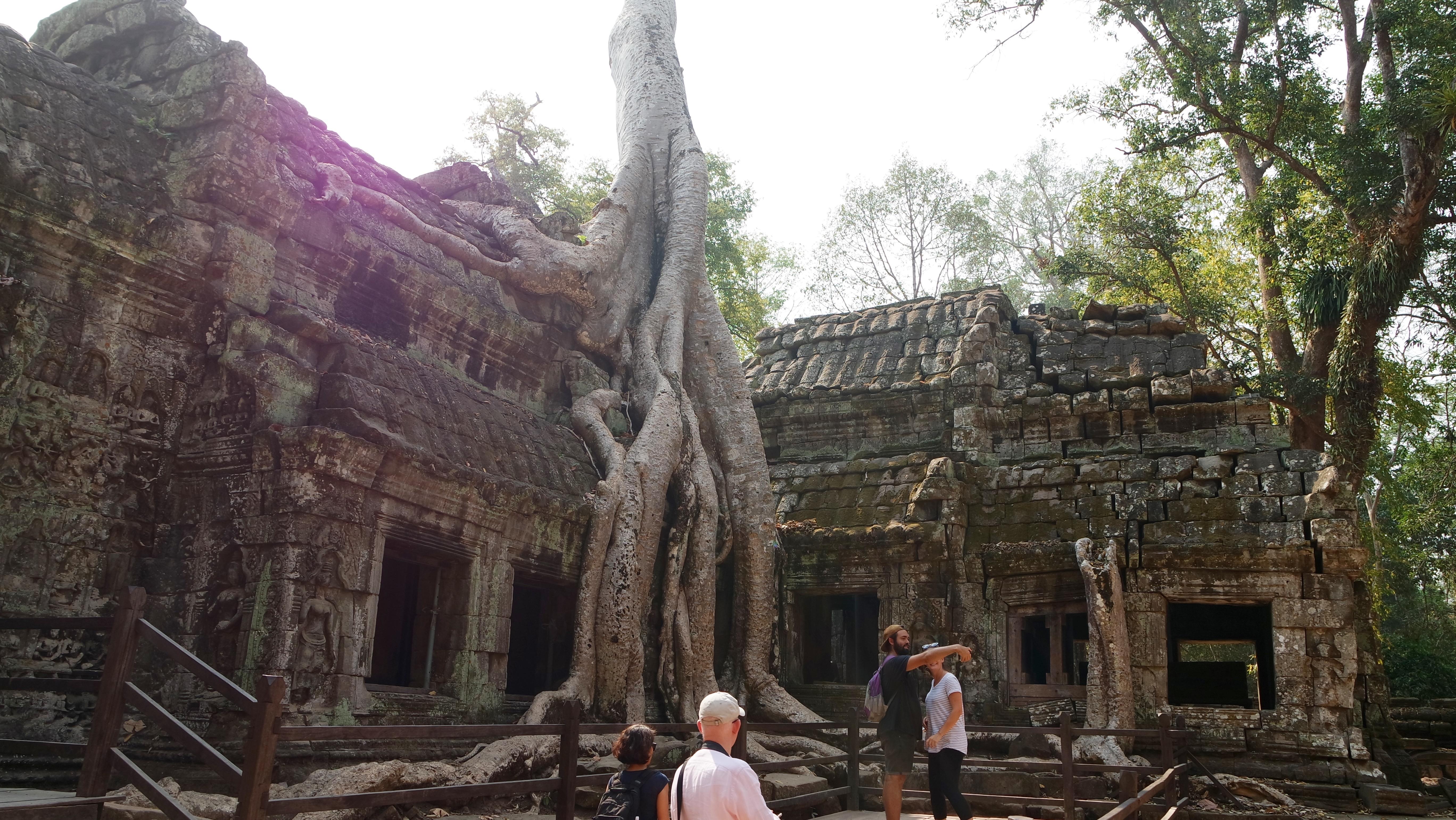 Ta Phrom Tapınağı